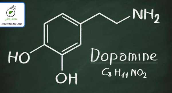 هورمون دوپامین چیست و چه تاثیری بر بدن دارد؟